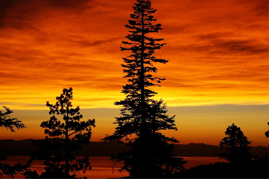 Lake Photograph - Lake Tahoe Sunset by Bruce Friedman