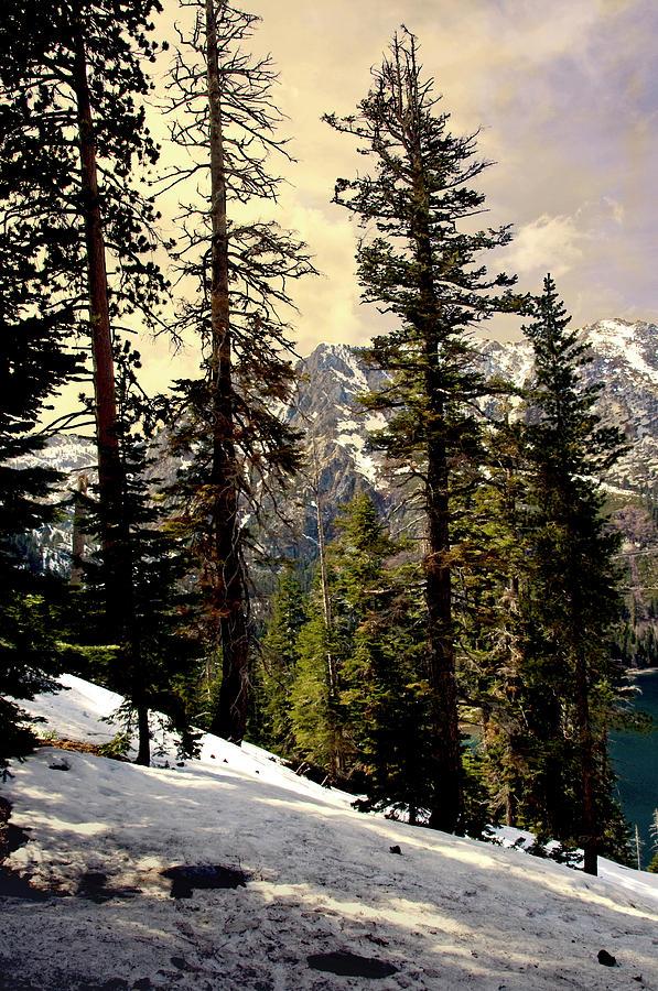 Lake Tahoe Winter Wallpaper Desktop Background: Lake Tahoe Winter Slope Photograph By Andre Salvador