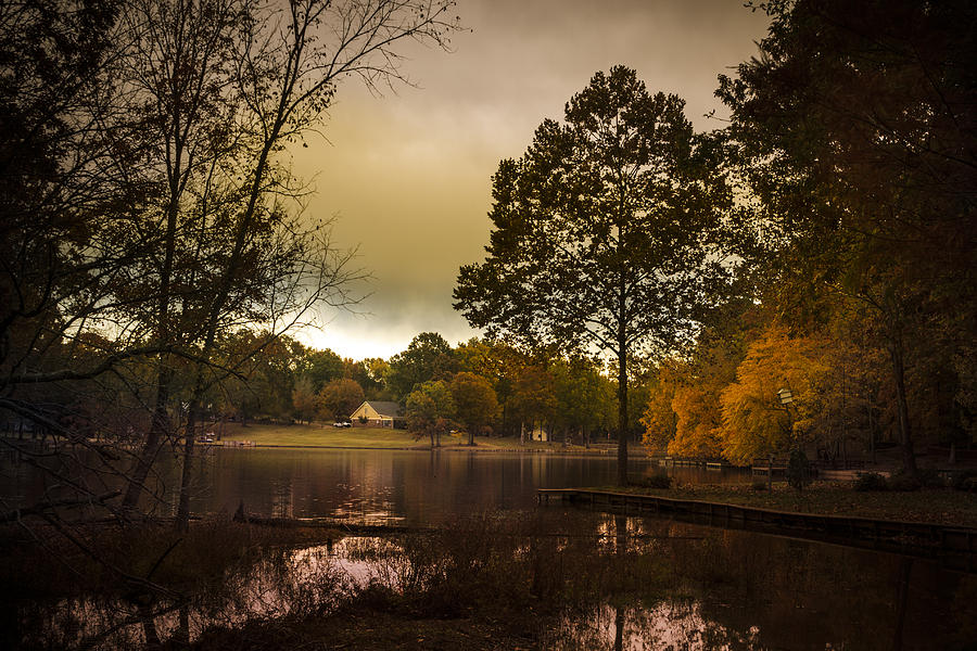 Trees Photograph - Lakefront Evening by Barry Jones