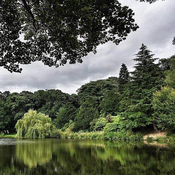 Lakeside At Temple Newsam Walking The Photograph by Carl Milner
