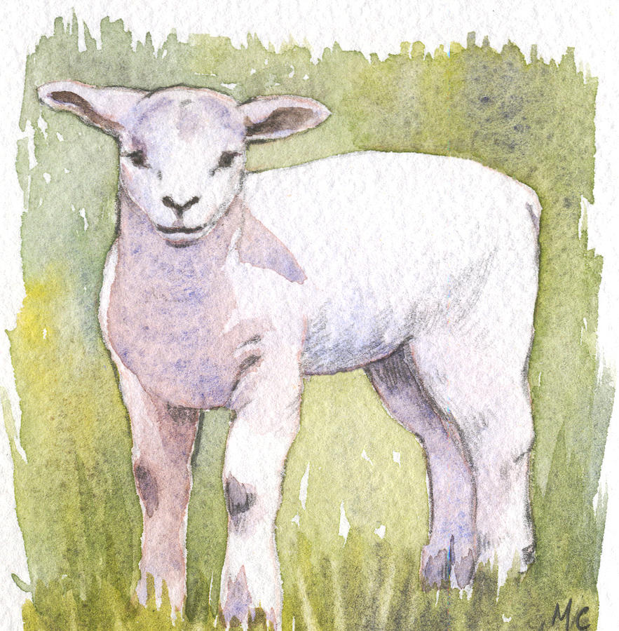 Animal Painting - Lamb by Maureen Carter