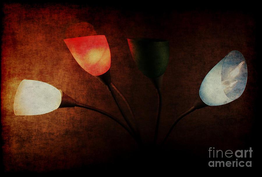 Lamp Photograph - Lamp by Billie-Jo Miller