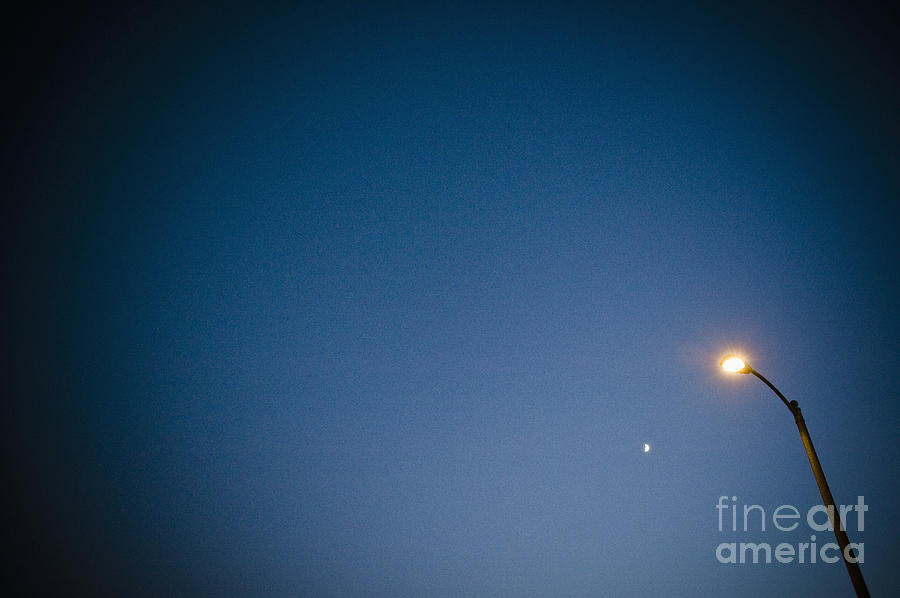 Copy Space Photograph - Lamppost At Dusk by Sam Bloomberg-rissman