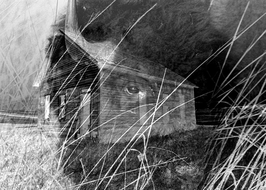 Bison Photograph - Land That Time Forgot by Rick Rauzi