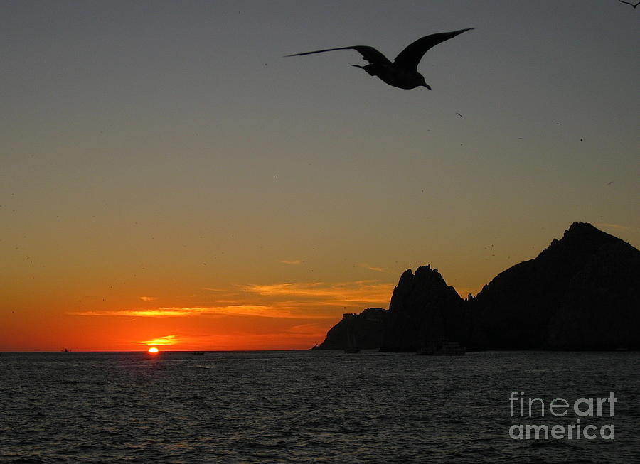 Land's End Sunset Photograph - Lands End Sunset by Judee Stalmack