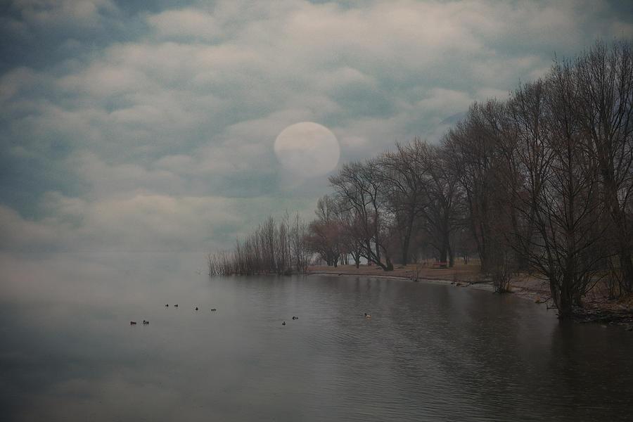 Bay Photograph - Landscape Of Dreams by Joana Kruse