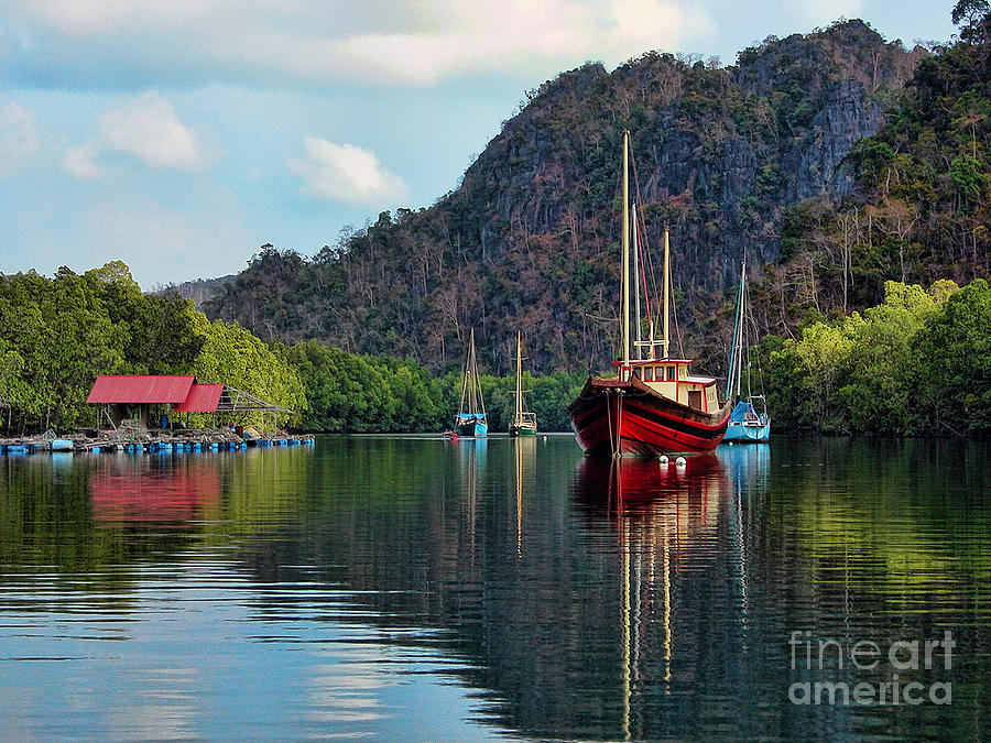 Far East Photograph - Langkawi Mangroves by Graham Taylor