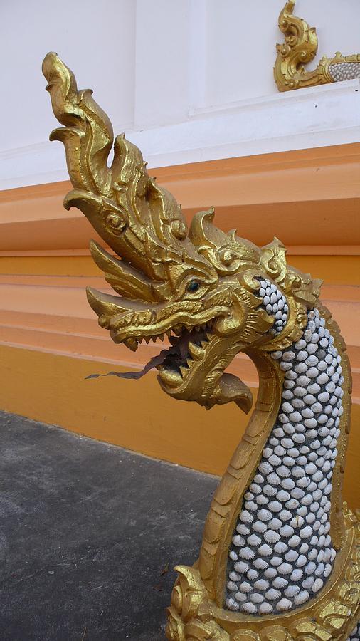 Naga Photograph - Laos Naga  by Gregory Smith