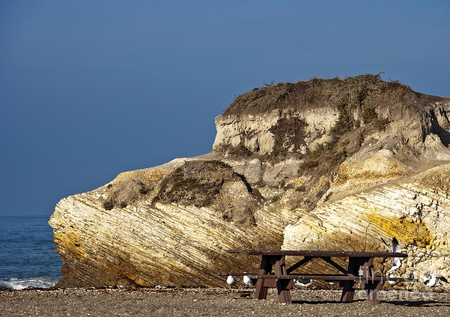Beach Photograph - Large Rock And Picnic Area On Beach by David Buffington