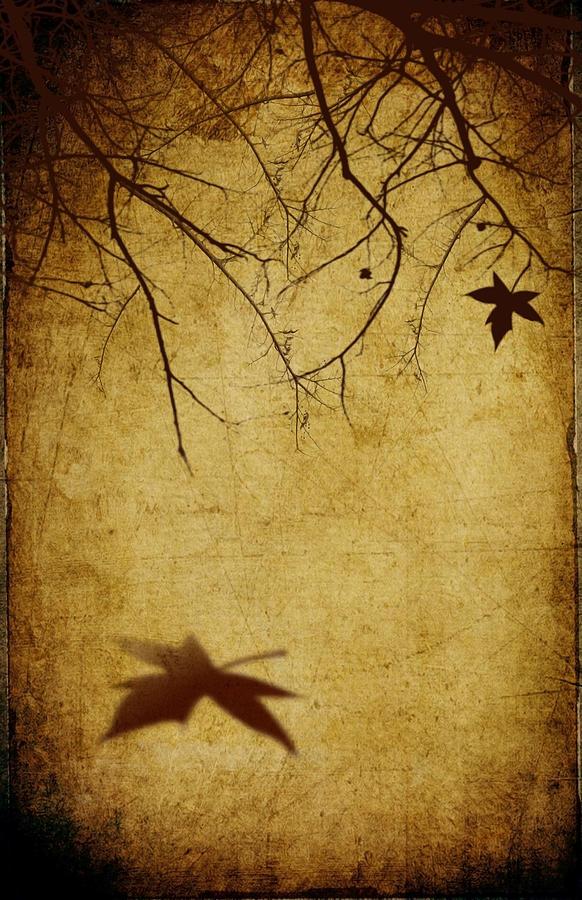 Abstract Digital Art - Last Breath Of Autumn by Svetlana Sewell