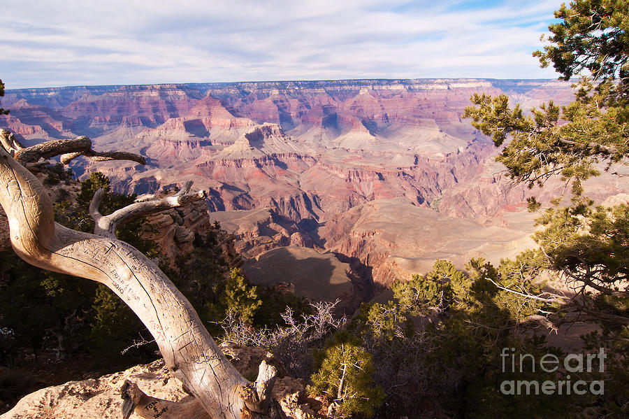 Grand Canyon Photograph - Late Afternoon At The South Rim by Bob and Nancy Kendrick