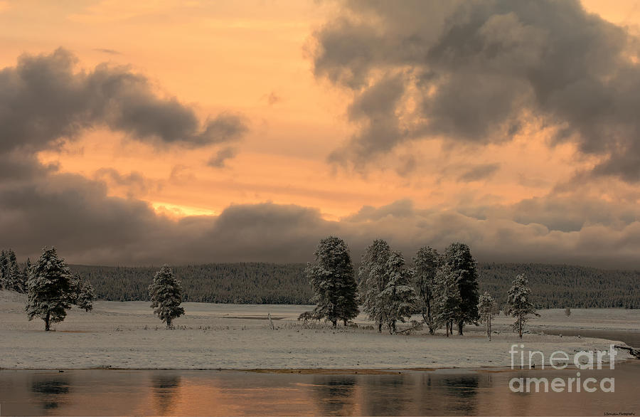Yellowstone Photograph - Late Spring Storm In Yellowstone by Sandra Bronstein
