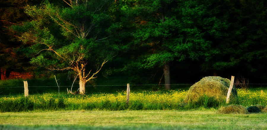 Haybale Photograph - Late Summers Eve by Mary Frances