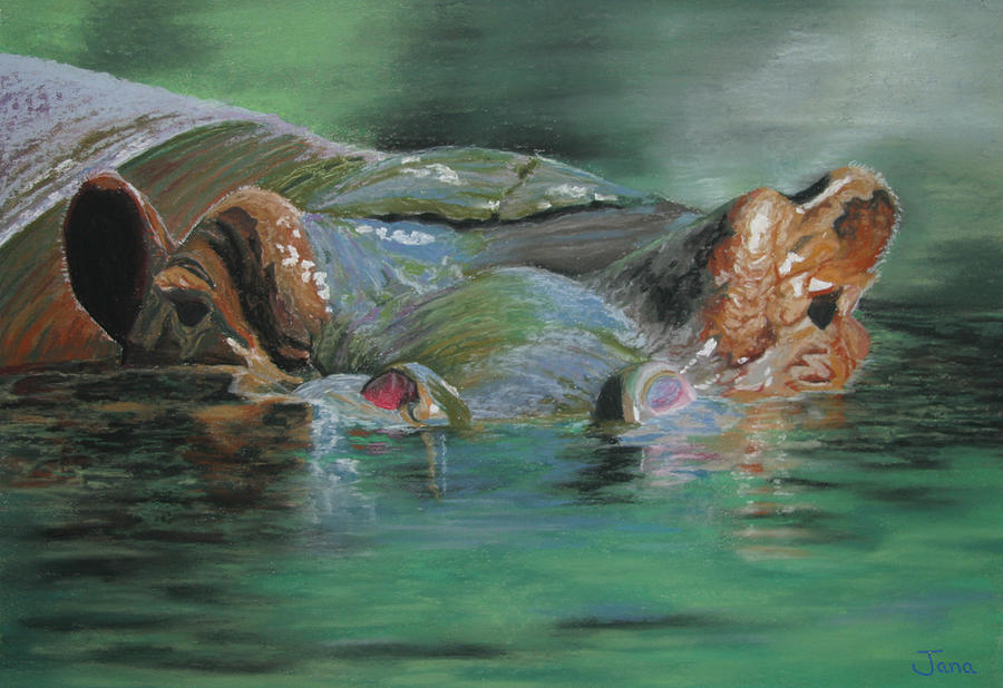 Lazy Hippo Painting By Jana Pfremmer
