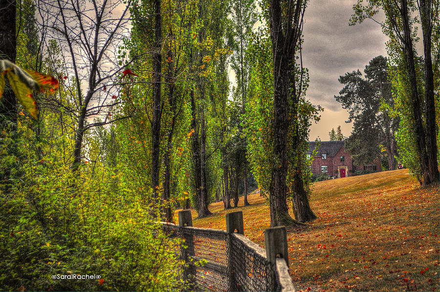 Fall Photograph - Le Chateau A Fall Day In The Nw by Sarai Rachel