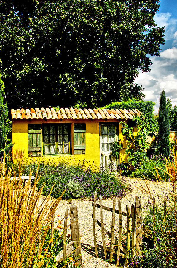 Garden Photograph - Le Jardin De Vincent by Chris Thaxter