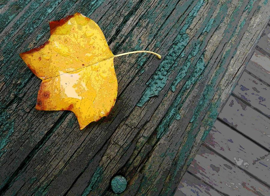 Leaf On Wood Photograph by Don L Williams