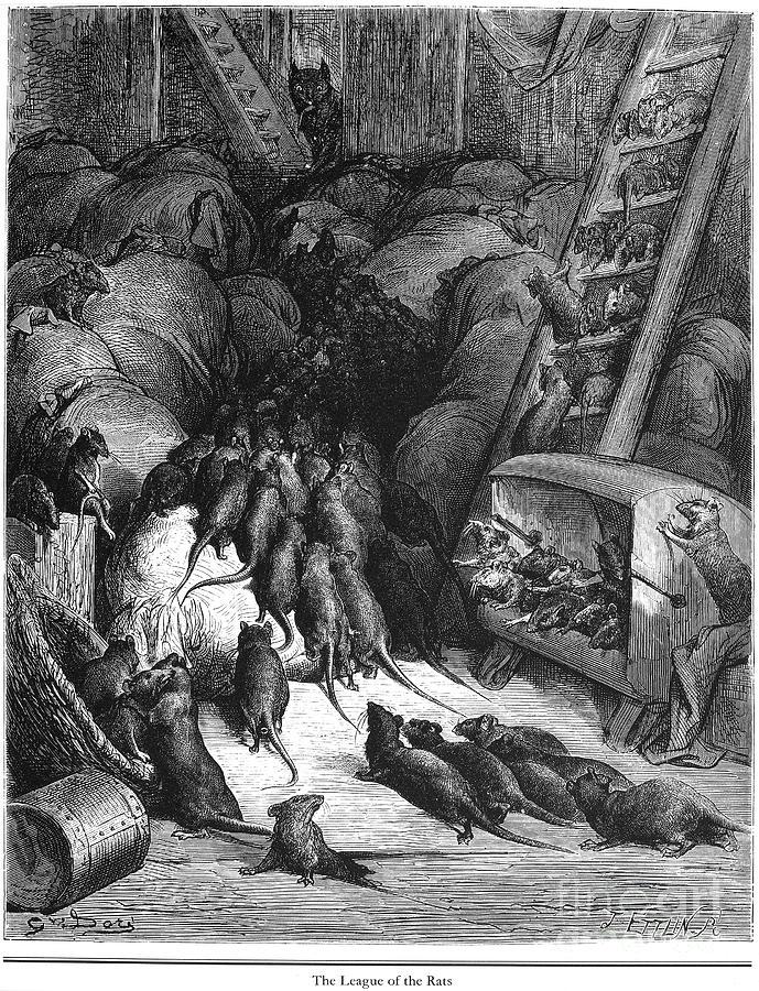 1868 Photograph - League Of Rats, 1868 by Granger