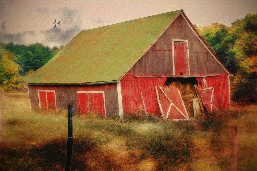 Barns Photograph - Lean To The Left by Mary Timman