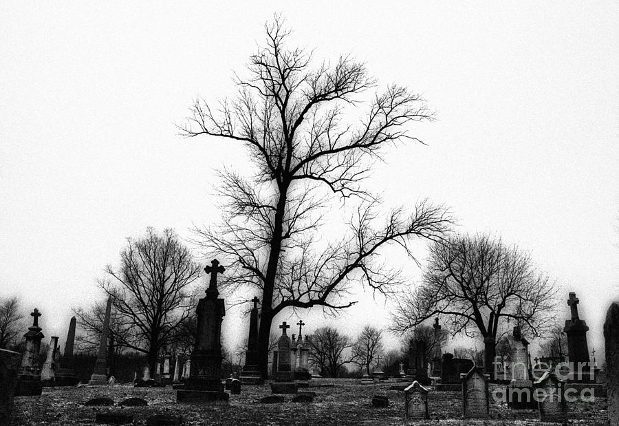 Graveyards Photograph - Leaning Crosses by Jeff Holbrook