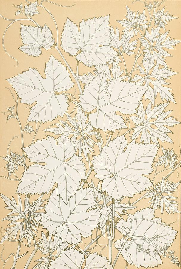Christopher Painting - Leaves From Nature by Christopher Dresser