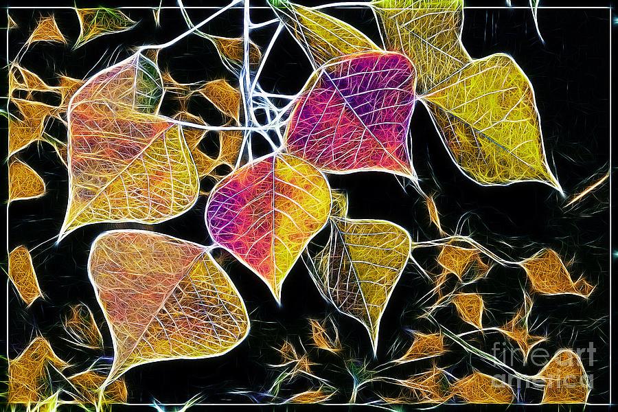 Leaves Photograph - Leaves by Judi Bagwell