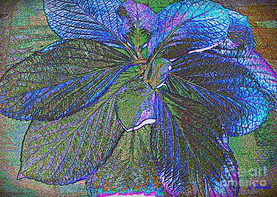 Leaves Of Blue Photograph
