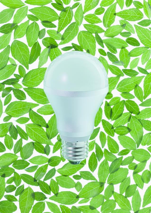 Led Bulb Surrounded With Leaves (ecology Image) Photograph by sozaijiten/Datacraft