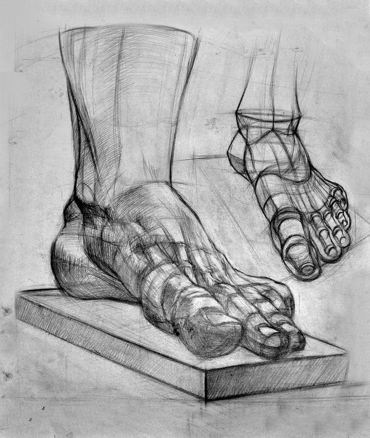 Leg Anatomy Study Drawing by Gaurav Mishra