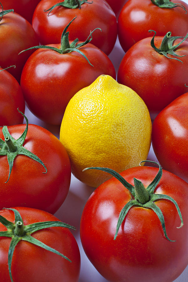 Lemon Photograph - Lemon And Tomatoes by Garry Gay