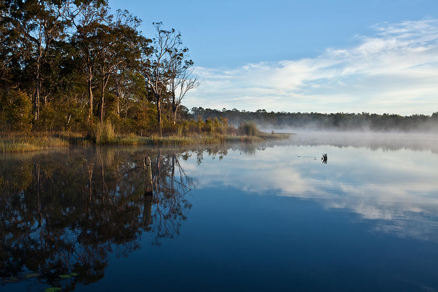 Australian Landscape Photograph - Lenthalls Dam 03 by David Barringhaus