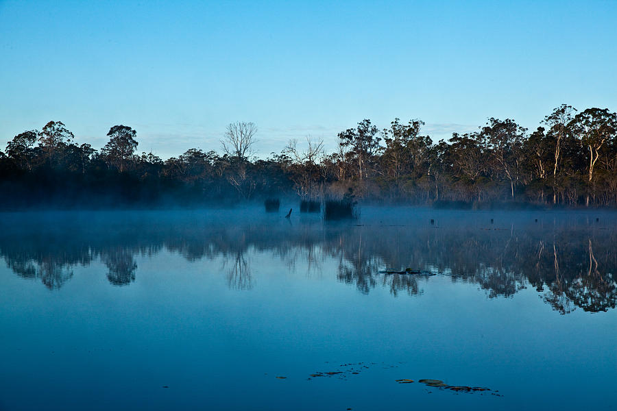 Australian Landscape Photograph - Lenthalls Dam 11 by David Barringhaus
