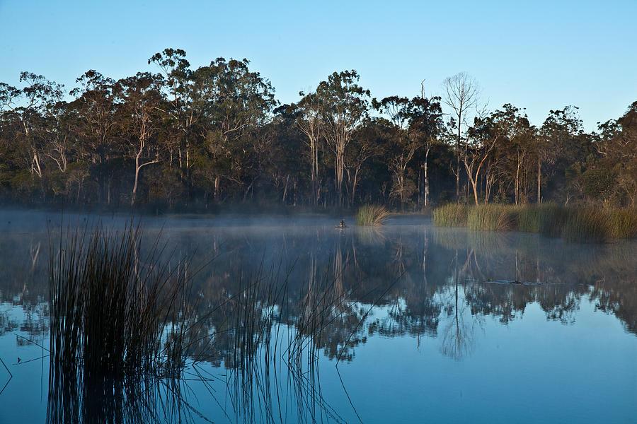 Australian Landscape Photograph - Lenthalls Dam 12 by David Barringhaus