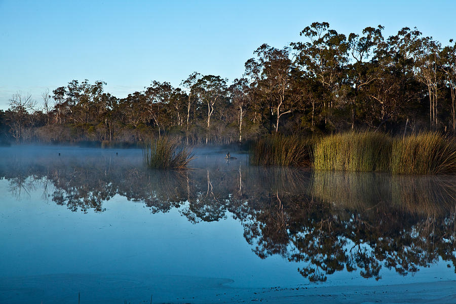 Australian Landscape Photograph - Lenthalls Dam 14 by David Barringhaus