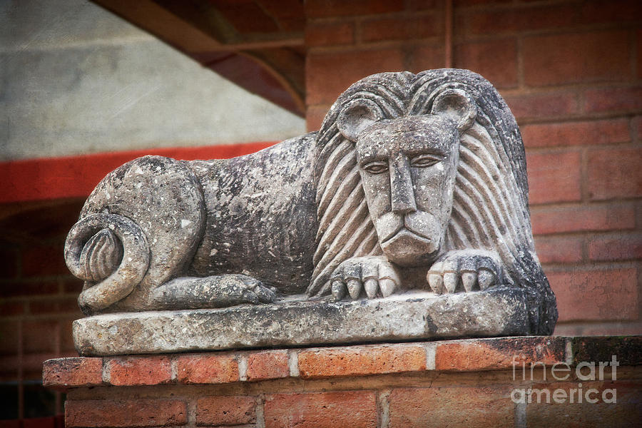 Lion Photograph - Leo On A Wall by Susan Isakson