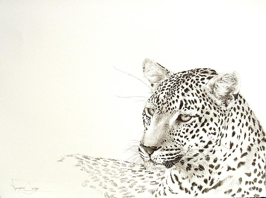 Leopard Painting - Leopard Resting by Vanessa Lomas