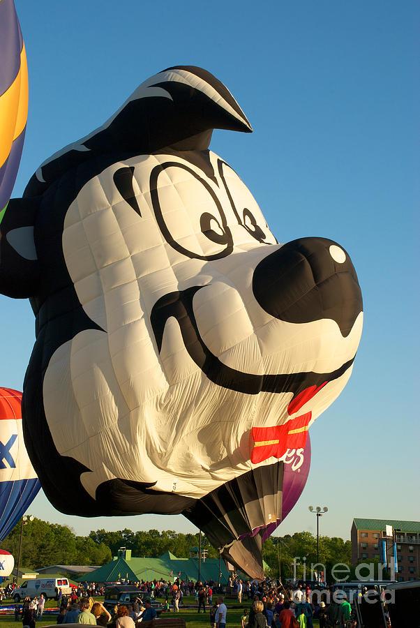 Hot Air Balloon Photograph - Lepew by Mark Dodd