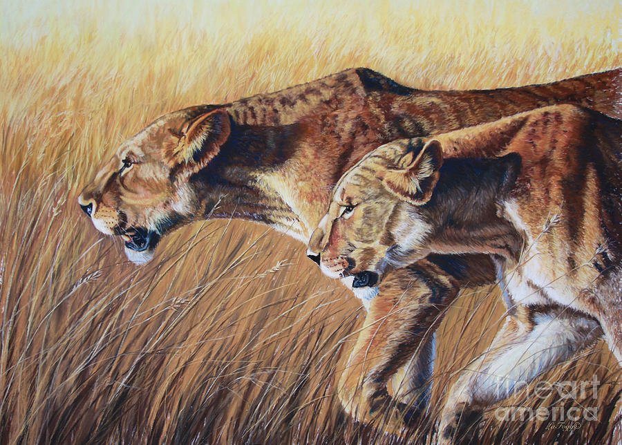 Lions Painting - Let The Hunt Begin by Deb LaFogg-Docherty