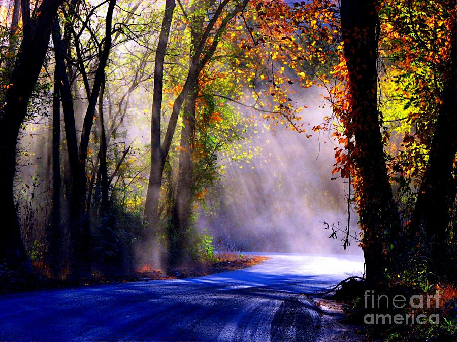 Rural Photograph - Let Your Light Shine Down On Me by Carolyn Wright
