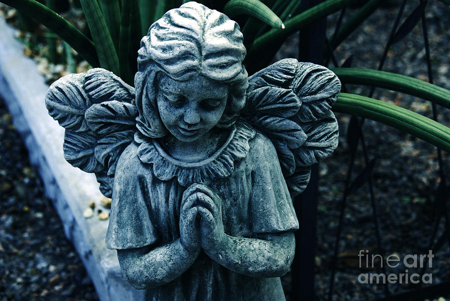 Angel Photograph - Lets Pray by Susanne Van Hulst
