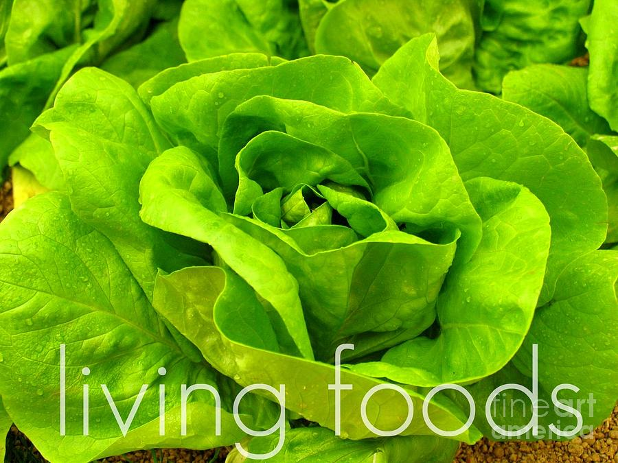 Raw Foods Photograph - Lettuce Living Raw Foods by Sacred  Muse