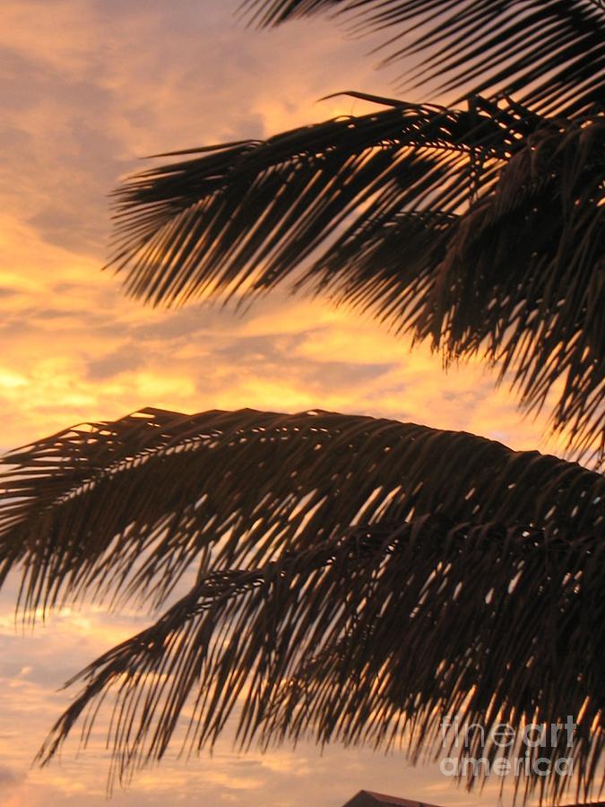 Lever Du Soleil - Ile De La Reunion Photograph by Francoise Leandre