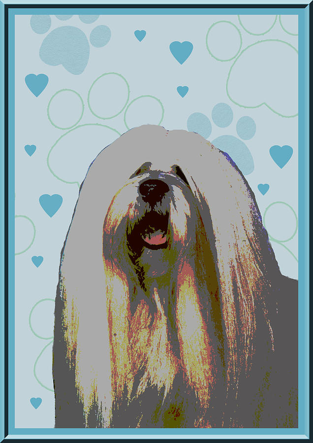 Lhasa Apso Photograph - Lhasa Apso by One Rude Dawg Orcutt