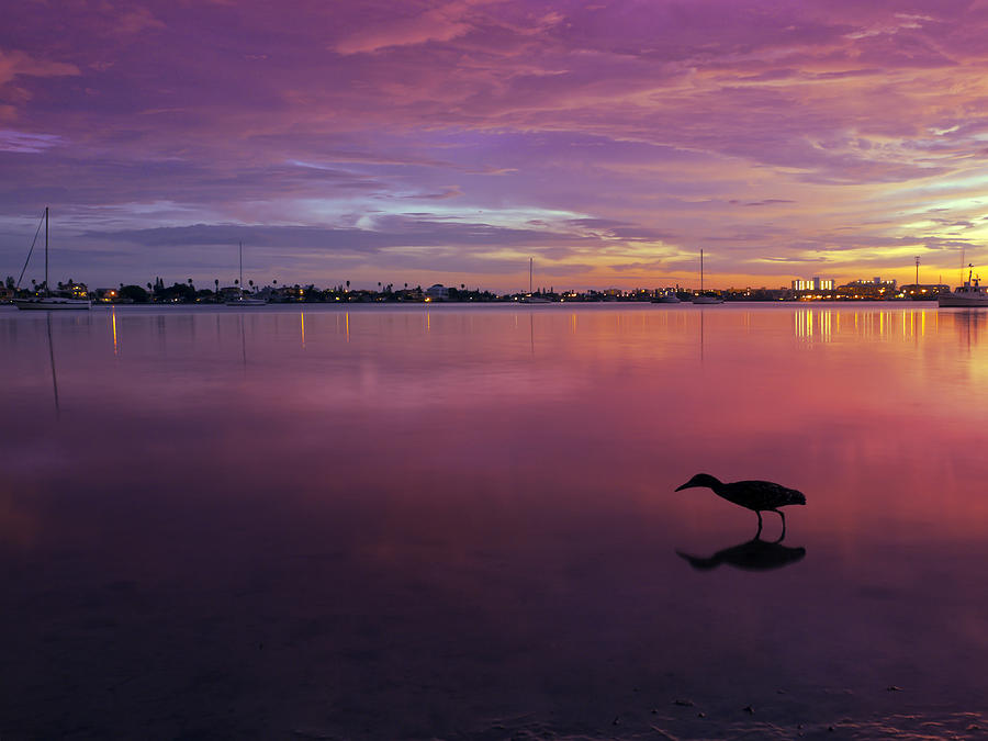 Lights Photograph - Life After Sunset by Melanie Viola