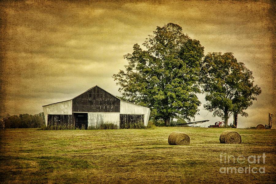 Barn Photograph - Life On The Farm by Cheryl Davis
