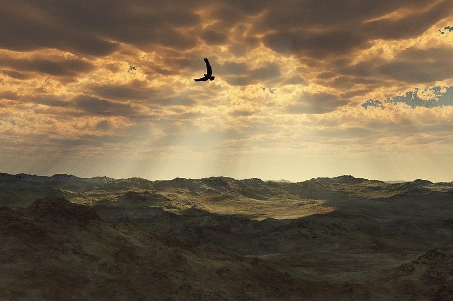 Landscape Digital Art - Light In The Valley by Julie Grace