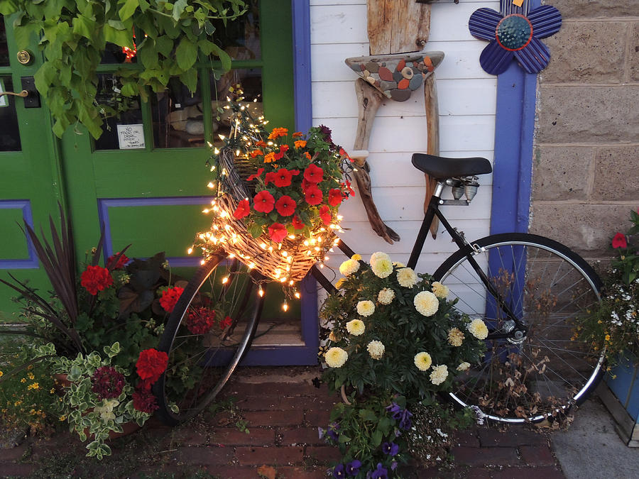 Bayfield Photograph - Lighted Bicycle Bayfield by Peg Toliver