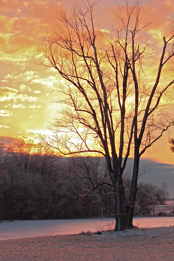 Cold Winter Day Photograph - Lighten Up The Sty by Mike Flake