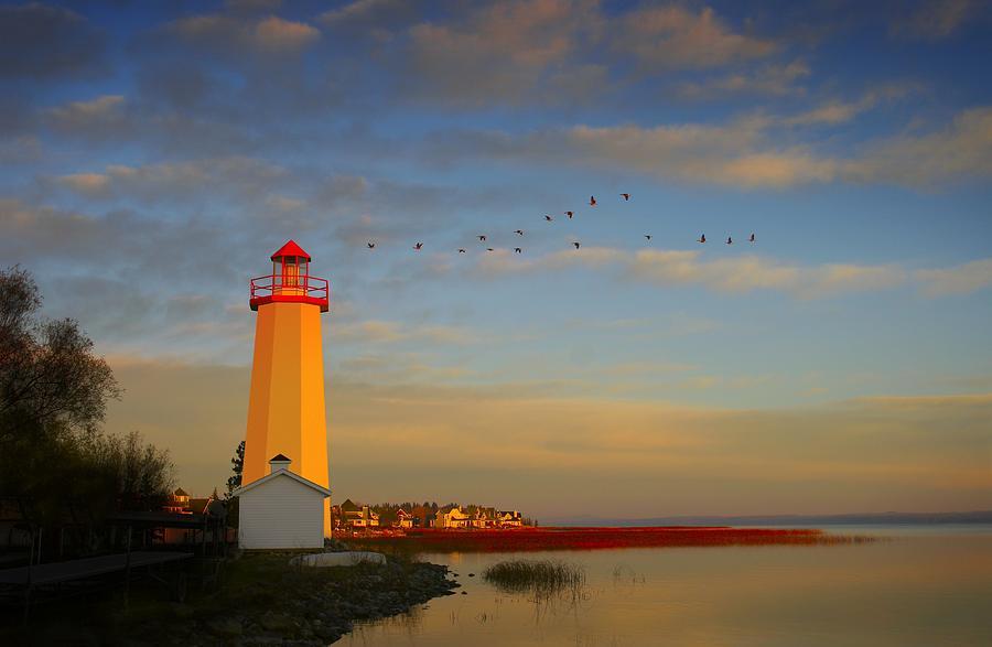 Animal Photograph - Lighthouse, Sylvan Lake, Alberta, Canada by Christine Mariner