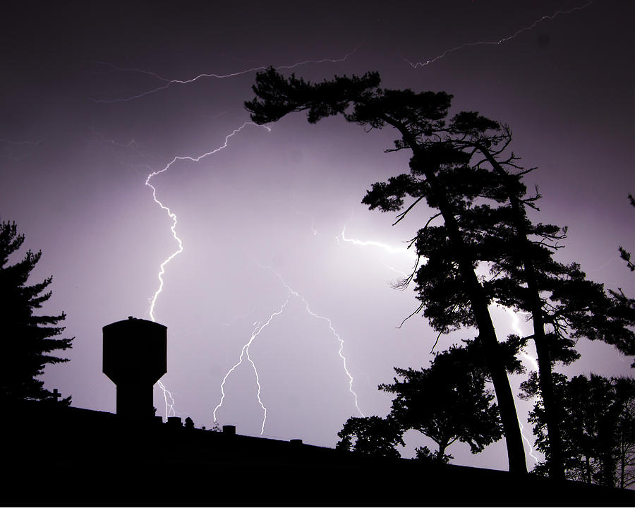 Lightning Photograph - Lighting Tree by Ethan  Bryant